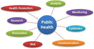 public health statement of purpose essay