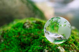 environmental science personal statement of purpose for graduate